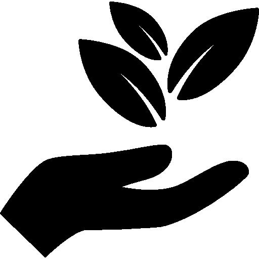 leaf64 (1)
